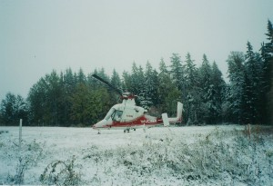 Austrofoma ヘリコプター