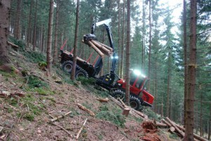 Forwarder in the forest