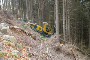 Harvester in the forest