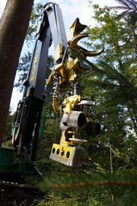 3.2.3複層林における機械化された収穫2