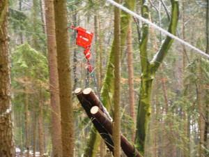 3.4.2簡易な架線集材システムを使った小規模所有者林での収穫