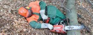 4.2.1森林における早急な救助
