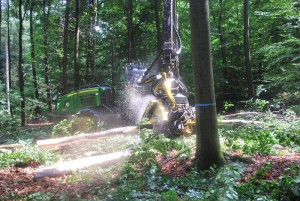 3.5.2エネルギー用木材収穫2