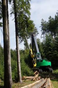 3.2.3複層林における機械化された収穫