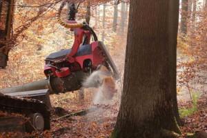 3.2.1半機械化された硬い大径木の伐倒