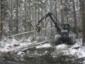 3.1.2長い木の収穫