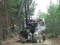 2.2幼齢林の全機械化による手入れ