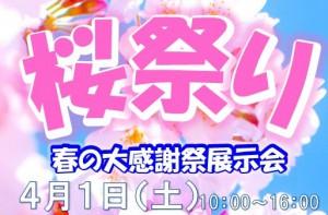 桜祭りちらし(アイキャッチ画像)